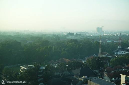 view (7)
